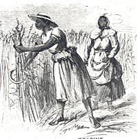 Reading Comprehension: Big Picture Questions – Planter-legislators of the post-Civil War..